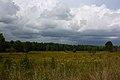 Spotsylvania Battlefield 2.JPG