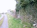 Srue-Srubh - geograph.org.uk - 1251845.jpg