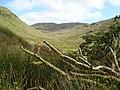Sruell Gap, Na Cruacha Gorma - geograph.org.uk - 962870.jpg
