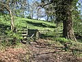 Stile out of Cascade Wood - geograph.org.uk - 1265662.jpg