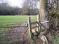 Stile strapped to a tree - geograph.org.uk - 1692350.jpg