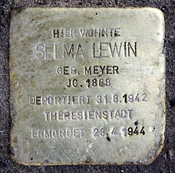 Photo of Selma Lewin brass plaque