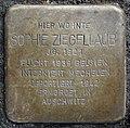 Stumbling stone for Sophie Ziegellaub (Thieboldsgasse 102)