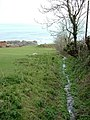 Stream heading to Western Cove - geograph.org.uk - 423094.jpg
