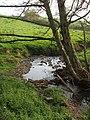 Stream near Marhamchurch - geograph.org.uk - 421150.jpg