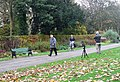 Student at work - Bute Park, Cardiff - geograph.org.uk - 1575694.jpg