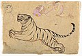 Studies of a Tiger and Two Humans LACMA M.79.191.12.jpg