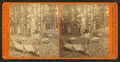 Successful Hunters dressing Elk, by I. W. Marshall 3.png