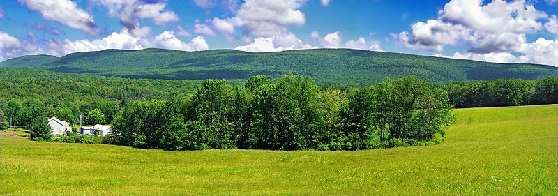 http://upload.wikimedia.org/wikipedia/commons/thumb/2/20/Sugarloaf_Twp_Greenery.jpg/800px-Sugarloaf_Twp_Greenery.jpg