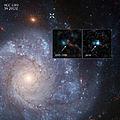 Supernova 2012Z.jpg
