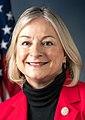Susan Wild, Official Portrait, 115th Congress (cropped).jpg