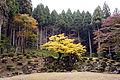 Suwa Yakata-ato Garden of Ichijodani Asakura Family Historic Ruins01s3s4592.jpg