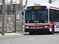 TTC bus on Lower Jarvis between Lake Shore Boulevard and Queen's Quay, 2016 07 05 (1).JPG - panoramio.jpg