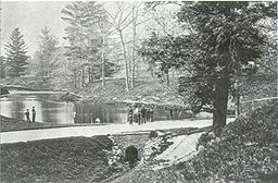 Taddle Creek - McCaul's Pond.jpg