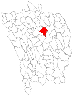Location of Tanacu