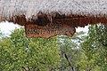 Tarangire 2012 05 28 1836 (7468548220).jpg