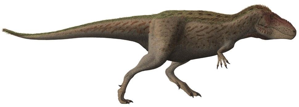 Tarbosaurus Steveoc86 flipped