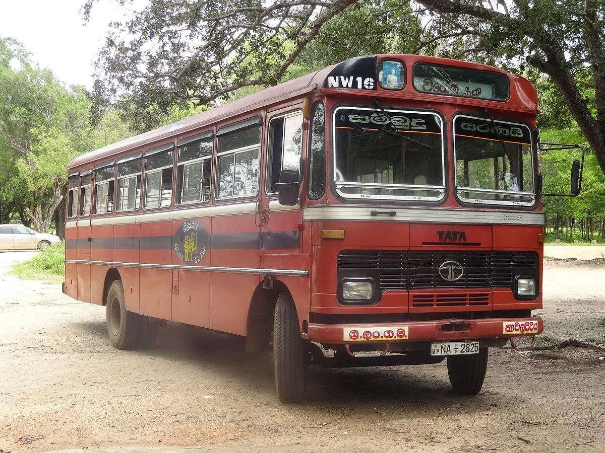 File:Tata school bus 01.JPG - Wikimedia Commons