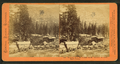 Teaming from the Central Pacific Railroad at Cisco, Placer County, by Thomas Houseworth & Co..png