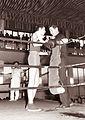 Tekmovanje mladih boksarjev Vojvodine in Slovenije 1962.jpg