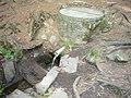 Tekoucí voda Pelestrovské studánky I.jpg