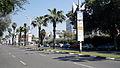 Tel Aviv Art Year shaul hamelech.JPG