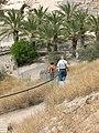 Tel Bet She'an Walking down the Tell 1290 (514575830).jpg