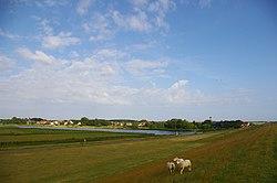 View of De Cocksdorp