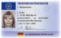 Tfz-Fuehrerschein VS.png