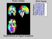 File:The-Increase-of-the-Functional-Entropy-of-the-Human-Brain-with-Age-srep02853-s1.ogv