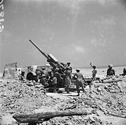 The British Army in North Africa 1941 E3870