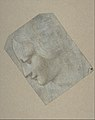 The Head of a Woman in Profile Facing Left MET DP810249.jpg