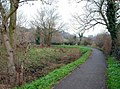 The Lagan towpath (2) - geograph.org.uk - 637071.jpg