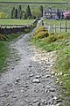 The Pennine Bridleway towards Shaw Bottom - geograph.org.uk - 430585.jpg
