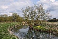 The River Ock - geograph.org.uk - 1239117.jpg