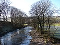 The River Ribble at Horton - geograph.org.uk - 477520.jpg