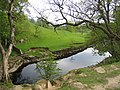 The River Ribble from the Ribble Way - geograph.org.uk - 435878.jpg
