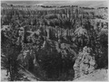 The Silent City from across Bryce Canyon near Bryce Temple. - NARA - 520305.tif