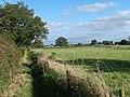 The Staffordshire Way - geograph.org.uk - 1510097.jpg