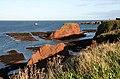 The coastline at Dunbar - geograph.org.uk - 1014326.jpg