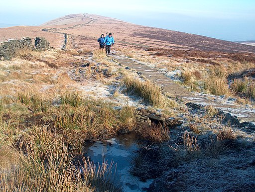 The paved path between Cats Tor and Shining Tor - geograph.org.uk - 1703980