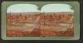 The ruin of San Francisco from California and Jones St., showing havoc by earthquake and fire, from Robert N. Dennis collection of stereoscopic views.png