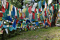 Tibetan Prayer Flags (2484758957).jpg