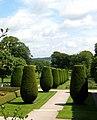 Topiary at Lanhydrock House, Cornwall.jpg