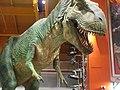 Toys-R-Us T Rex (8501318957).jpg