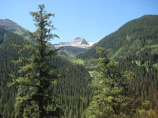 Treasure Mountain (Colorado) mountain in United States of America