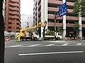 Tree cutting near Akasaka Station.jpg