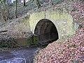 Tunnel under A39 - geograph.org.uk - 1719245.jpg