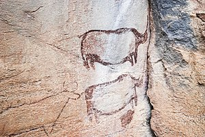 Botswana art - San rock art at the UNESCO World Heritage Site of Tsodilo