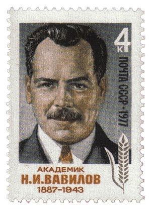Nikolai Vavilov - Postage stamp, USSR, 1977.